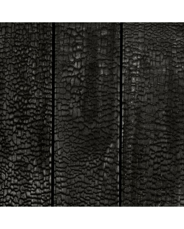 Panneau Mural Kebony 21x125x3050 mm Brûlé Fixé Verni