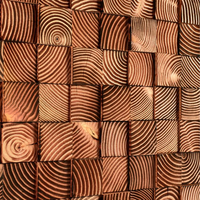 Panneau Mural Bois de Bout Caramélisé 16x300x760 mm Brûlé